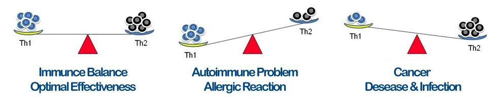 sistem imun seimbang - manfaat transfer factor - immune balance
